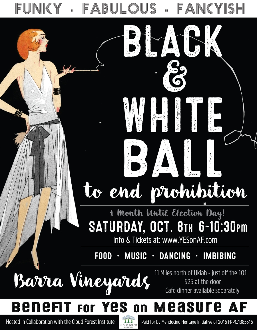 black-and-white-ball-poster